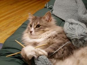 My kitties attack my yarn, too!